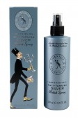 ANTI-TARNISH SILVER POLISH SPRAY - Spray polish argint